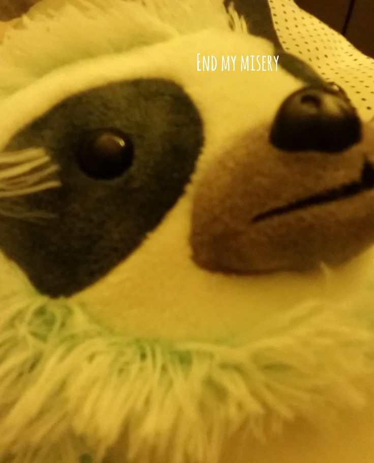 Hahahaha okay so this is Sid, my sloth teddy and he constantly looks dead inside and it's great 😂 anywaayyyss, THE DUDE AT 7 ELEVEN GAVE ME 4 FREE COFFEE VOUCHERS AND I AM BLESSED BECAUSE 7 ELEVEN COFFEE IS MY LIFE I WANTED TO KISS HIS CUTE LIL HEAD BLESS YOU DUDE!!