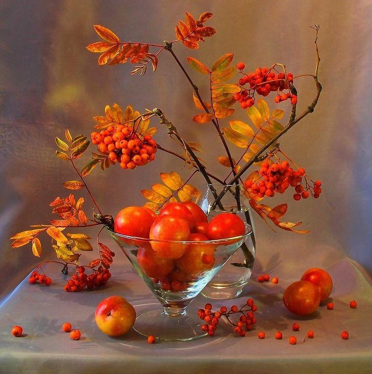 Доброго осеннего дня открытки