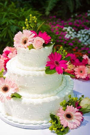 wedding cake decorated with gerbera daisies 17 best images about gerber wedding on 22362