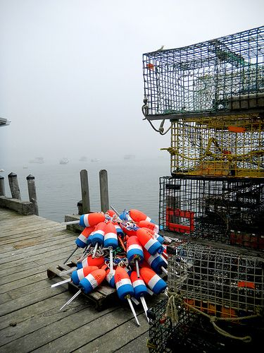 Buoys and Traps, Owls Head, Maine by Gwen Sylvester | Flickr - Photo Sharing!