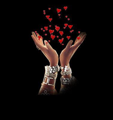 love roses  ❤️️LOVE