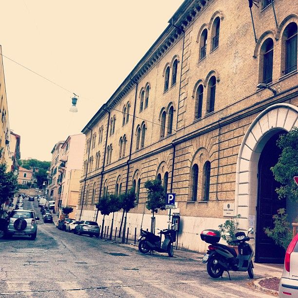 #ancona #aiesecer #aiesec #university #loveit #family #friends ❤ Photo by malvachiara • Instagram