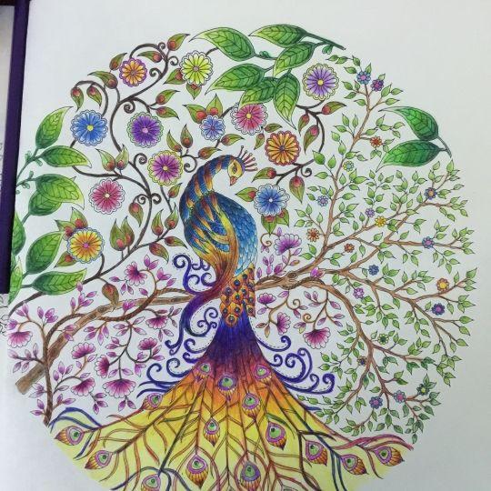 Color Pencil Art Coloured Pencils Johanna Basford Coloring Book Paons Secret Garden Books Colouring Gardens Peacocks