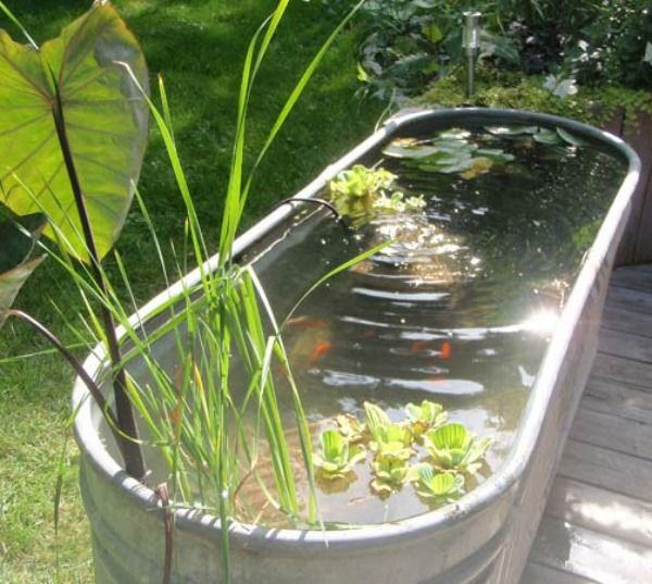 38 best washtub watergarden images on pinterest for Build your own fish pond
