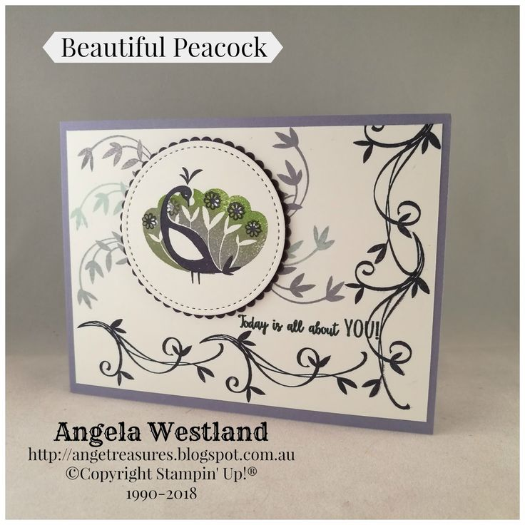 #beautifulpeacock #saleabrations2018 #stampinup #handmadecards #simplestamping #angelawestland #stitchedshapesframelits #layeringcircleframelits