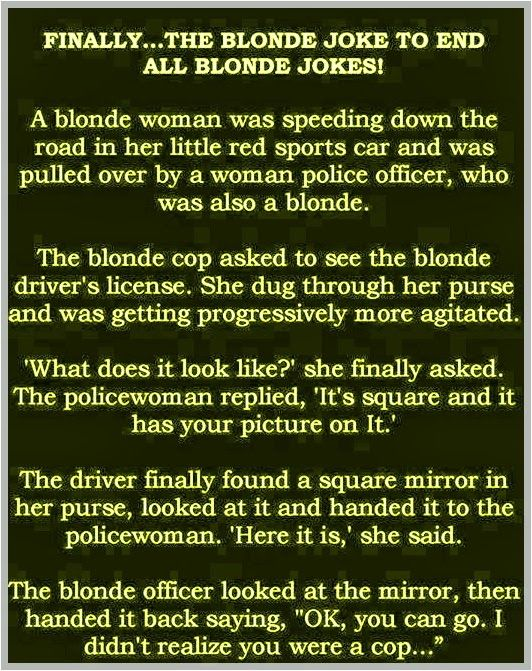 Finally, The Blonde Joke To End All Blonde Jokes, Funny Pictures