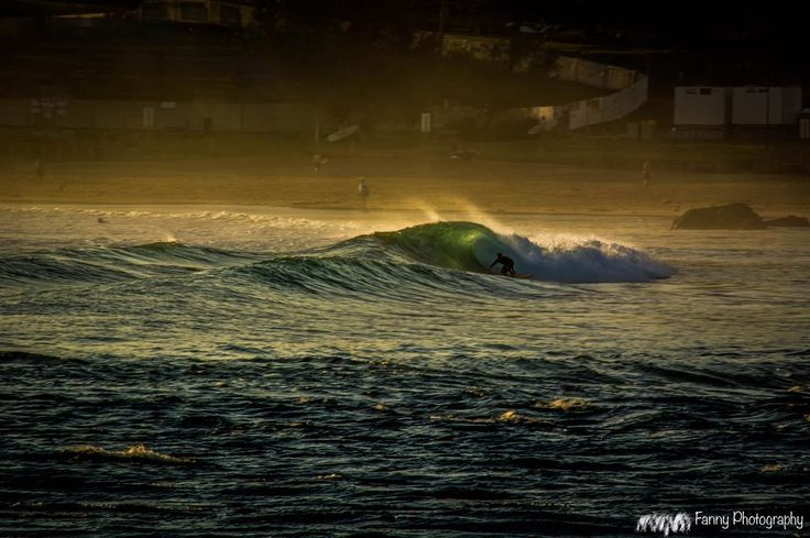 A quick pic from north wall on sunrise this morning watching the early risers get there pick before the crowds arrive also my favourite photo of this morning  yew #portmacquarie #townbeach #iloveportmacquarie #surfinglife #surf #surfer #barrel #shacks #mynikonlife #nikon #mynikonlife #picoftheday #photoofday #photography #landscape_captures #landscapephotography #sunrise #dawn #earlysurf #water #warm #summer #focusmagazine #beach #surfphotography #surflife #instasurf #northwall…