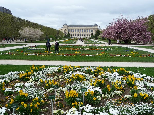 183 best images about jardin des plantes paris on for Jardine des plantes