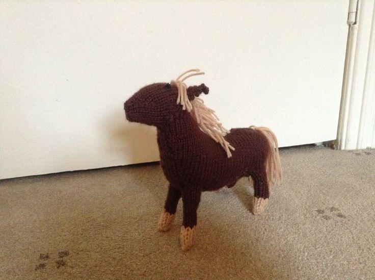 Isobel's Shetland Pony