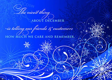 28 best holiday cards customer appreciation images on pinterest holiday cards for business seasonal sending features the nicest thing about december colourmoves Choice Image