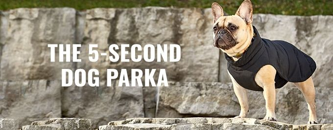 The 5-Second Dog Parka - The Best Dog Parka Ever Made