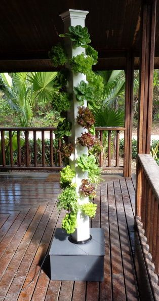 The Replenishing Tower - easily grow your own organic, all-natural, fresh (live) vegetables, herbs, spices