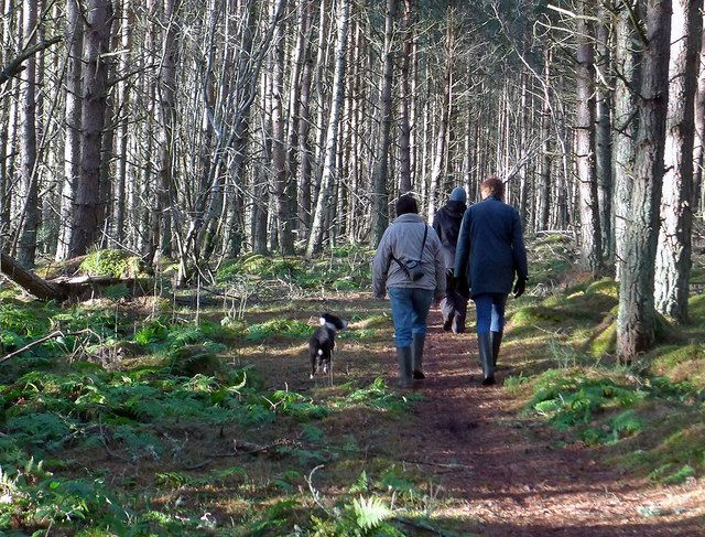 Wrap up and head out into the fresh air for a walk with the family this http://bit.ly/2hZnyDN