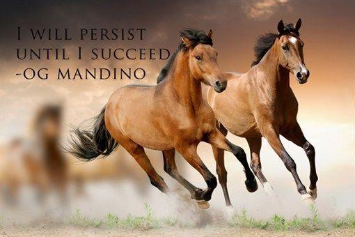 I will persist until i succed