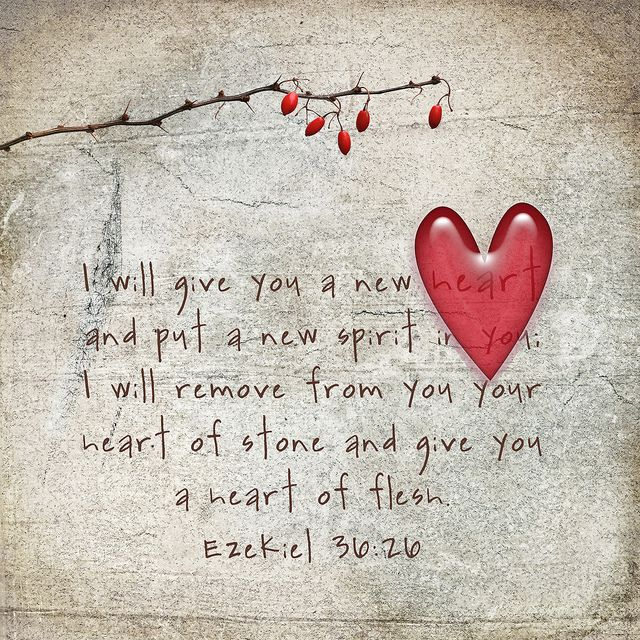 I Will Give You A New Heart And Put A New Spirit In You; I Will Remove From  You Your Heart Of Stone And Give You A Heart Of Flesh (Ezekiel NIV)
