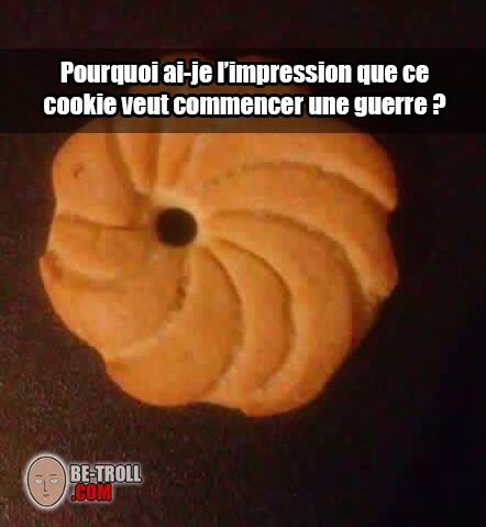 Pourquoi ai-je l'impression que ce cookie veut déclencher une guerre ? - Be-troll - vidéos humour, actualité insolite