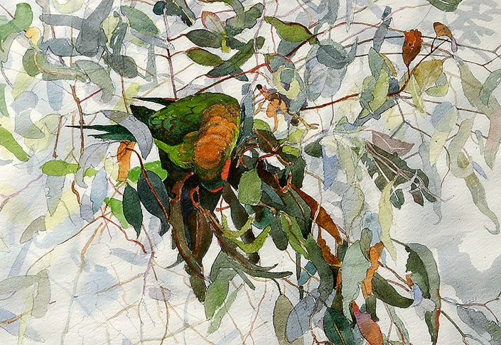 John Wolseley - The Wood, The World, and The Parrot, Roslyn Oxley9 Gallery, Sydney, 2006 - Roslyn Oxley9 Gallery