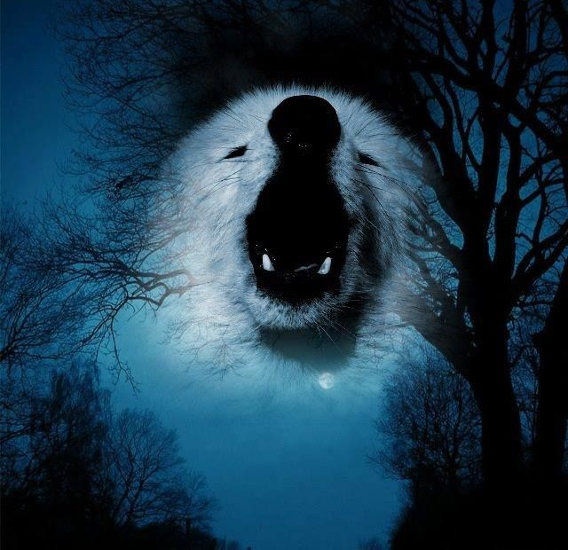 blood wolf moon meaning native american - photo #17