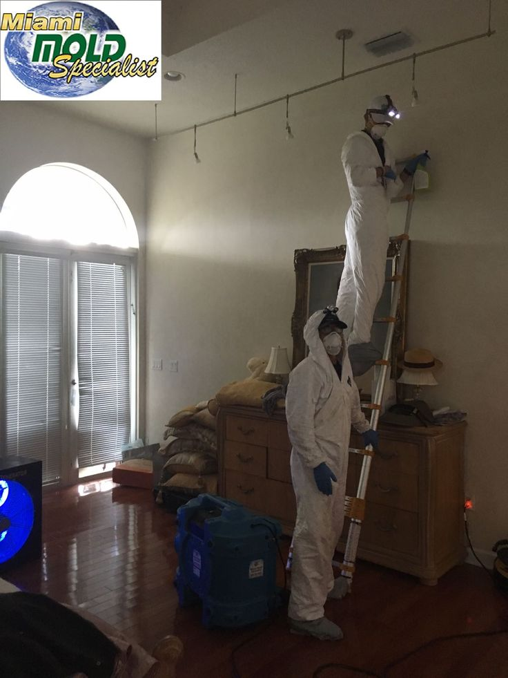Miami Mold Specialist, 305-763-8070 has many years of experience in mold inspections, mold removal, mold remediation, mold abatement, mildew removal, and water damage prevention near #MiamiBeach, #SouthBeach #NorthMiamiBeach #BalHarbor #StarIsland #SoBe #DodgeIsland #VenetianIslands