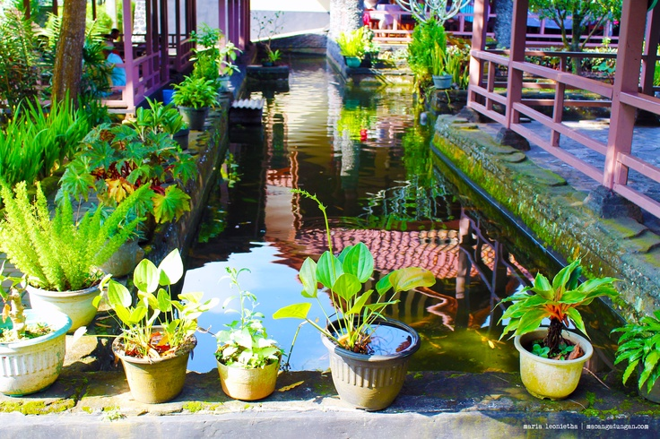 Fish pond in a restaurant, located at Ciamis.