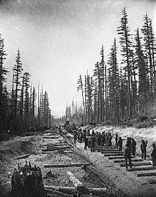 Canadian Pacific Railway ...laying tracks at lower Fraser Valley 1881