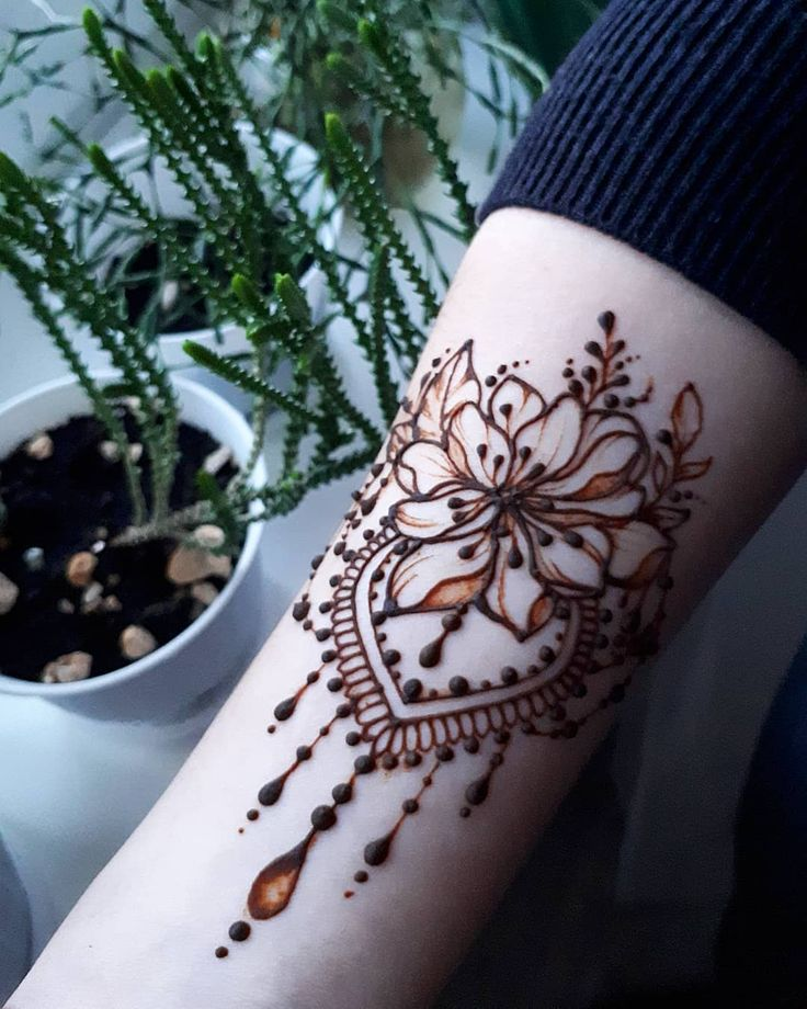 цветок хной картинки