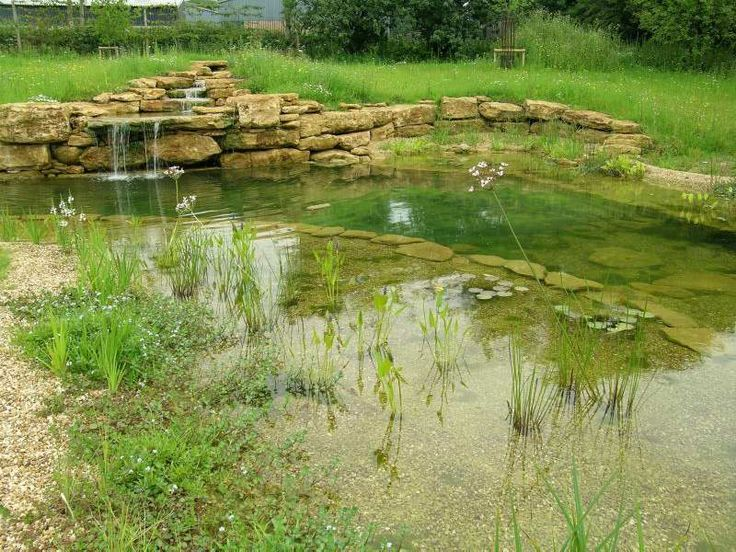 87 best images about yard garden swimming pools on pinterest water house backyard - The pond house nature above all ...