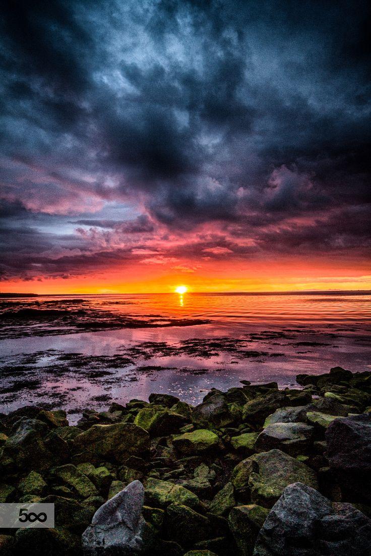 3461 Best Photography Sunrise Sunset Images On