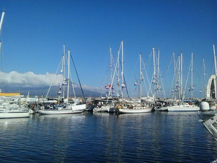 Marina of Horta