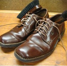 homemade shoe polish.