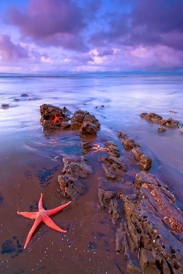 Water Cay Cayman Islands