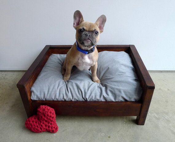 Designed with comfort and style in mind, Cozy Cama pet FURniture is perfect for dog and cat parents looking for a washable, attractive, and durable pet bed. We design our wooden beds to be used with your old pillow to create the coziest and best smelling sleeping spot for your pet. And did we mention how easy our beds are to maintain? Cleaning a Cozy Cama is as easy as washing a pillow sham! Our standard sized beds are designed for small dogs and cats. Outer dimensions are 25x19x11 and…