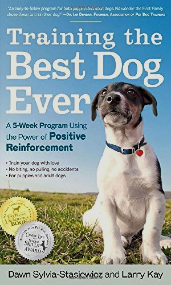 Report Why You Shouldn T Give Your Dog Fortiflora Dog Nutrition Dog Food Recipes Raw Feeding For Dogs