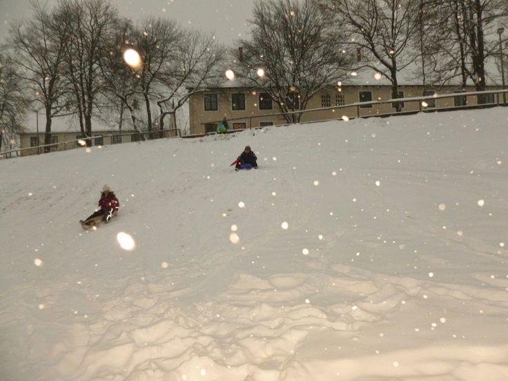 Una familia especial: Un dia de invierno...