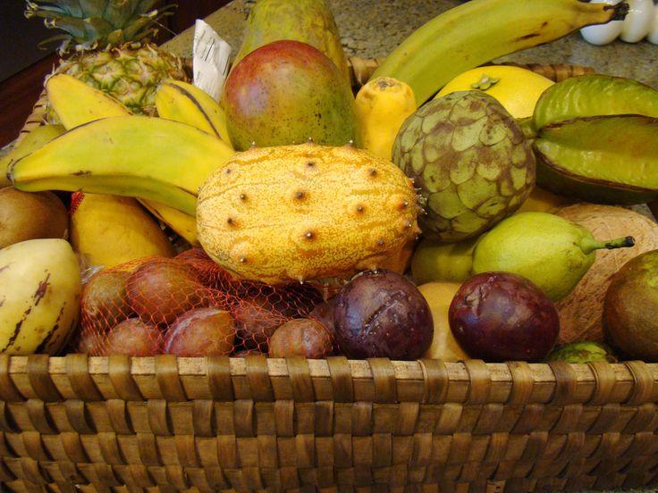 70 Best Images About Fla Plants Fruit Trees Flowers On Pinterest Banana Plants Jackfruit Tree