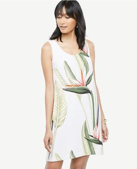 Palm Print shift dress from Ann Taylor