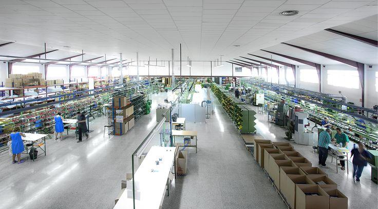 Somos un referente en la fabricación de calzado de calidad. Experiencia y saber hacer nos permiten conjugar trabajo artesanal, técnicas de fabricación únicas, procesos de producción eficientes e inversión en nuevas tecnologías. -----------------------------------------  We are leaders in the manufacturing of quality footwear. Experience and know-how allow us to combine craftsmanship, unique manufacturing techniques, efficient production processes and investment in new technologies.
