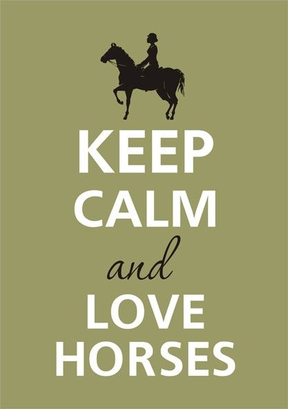 So true!Horseback Riding, Keep Calm Posters, So True, Keepcalm, Keep Calm Hors Quotes, Keep Calm And Hug A Ponies, Horses Quotes, Equestrian, Animal