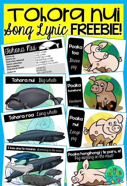 FREE 'Tohora Nui' song lyric printables. The kids will love creating their own actions to this super catchy song! This FREE printable includes both the Whale & pig verses in Māori & English. {Green Grubs Garden Club Blog}