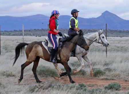 Starting the endurance horse