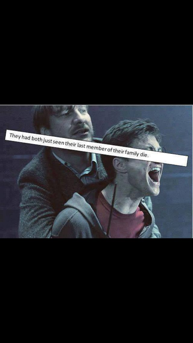Remus Lupin and Harry Pitter Watching Sirius Black Die