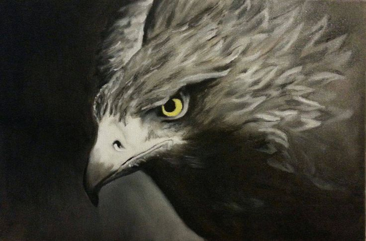 Golden eagle. Oil on canvas.Size 20x30cm.