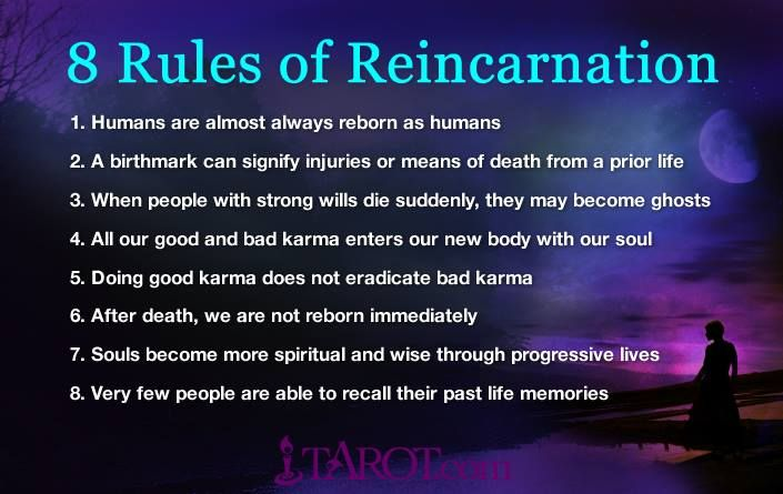 8 Rules of Reincarnation - Interesting to think about in terms of the characters in my new book ;) karisayersbooks.com