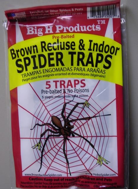 Brown Recluse Hobo Spider Traps Safe Effective 5 Traps | eBay  Good to know.....