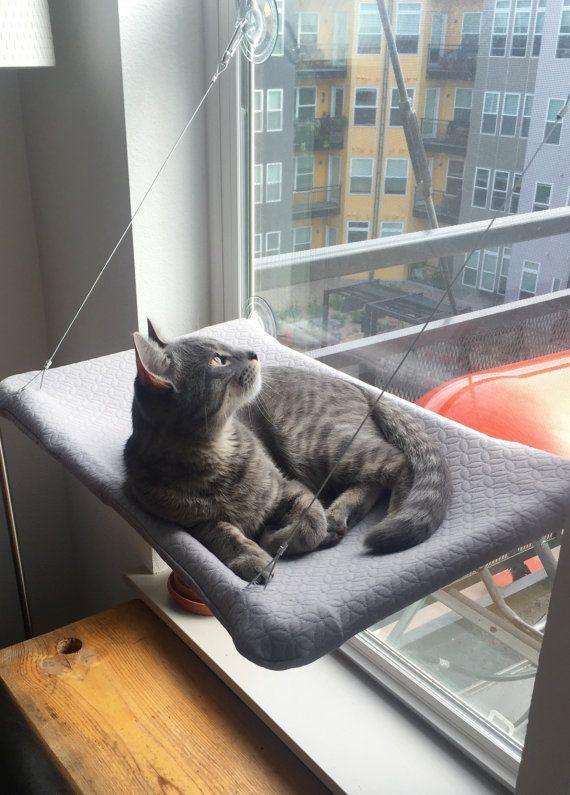 Grau neugierige Katzen Fenster Barsch von JennGv auf Etsy