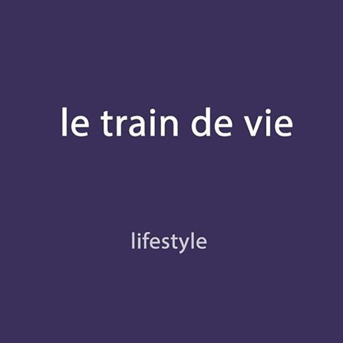 French expression of the day: le train de vie - lifestyle