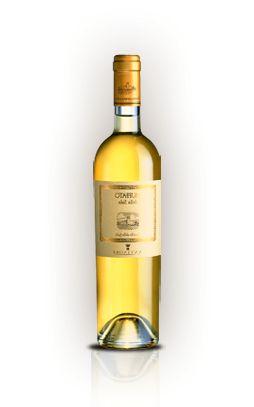 The wines | Marchesi Antinori