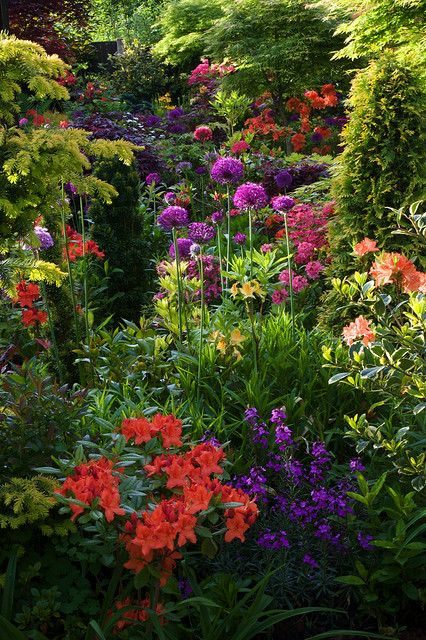1000+ Ideas About Small English Garden On Pinterest