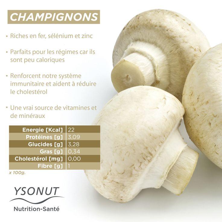 Vous les avez sûrement déjà consommés, nous parlons des #champignons. C'est un légume qui regorge de bienfaits et qui se marie à la perfection avec beaucoup de plats.