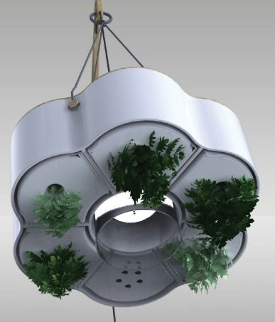 Indoor Spice Garden 9 best indoor spice gardens images on pinterest vertical gardens heres a space saving concept for a hanging indoor spice garden from designer ana arquezo a variety of herbs hang in a tastefully modern looking container workwithnaturefo